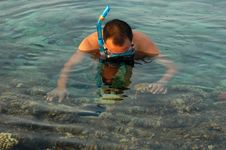 Free Snorkeling Royalty Free Stock Images - 15886649