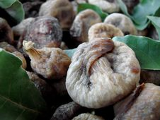 Free Dried Figs Stock Image - 15887201