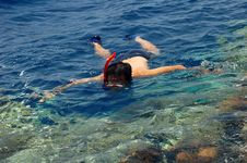 Free Snorkeling Royalty Free Stock Images - 15887289
