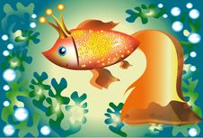 Free Gold Fish. Stock Images - 15887534