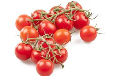 Free Tomatoes Royalty Free Stock Images - 15887559