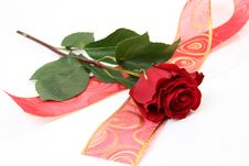Free Rose And Tape Stock Images - 15887574