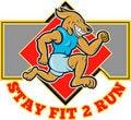 Free Dog Running Jogging Fit Run Royalty Free Stock Photo - 15895665