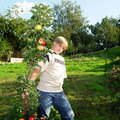 Free Teenager In Apple Orchard Stock Images - 15896654