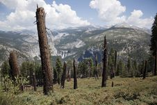 Free Yosemite Royalty Free Stock Photo - 15891625
