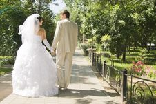 Groom And The Bride On Walk In Park