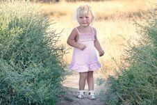Free Cute Toddler Girl Royalty Free Stock Photos - 15892278