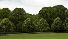 Free Parkland Royalty Free Stock Photo - 15892825
