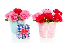 Free Red And Pink Roses With A Gift Royalty Free Stock Images - 15893389