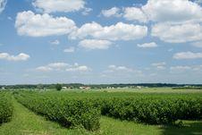 Free Landscape Stock Photo - 15894880