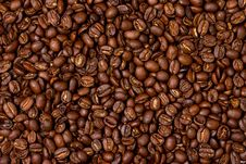 Free Coffee Beans Stock Photography - 15895682