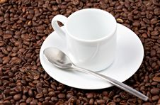 Free White Espresso Cup Sat On Coffee Beans Stock Photos - 15895683