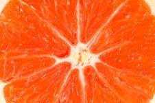 Free Orange Stock Photos - 15895973