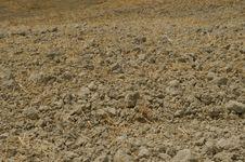 Free Plowed Field Stock Photos - 15897803