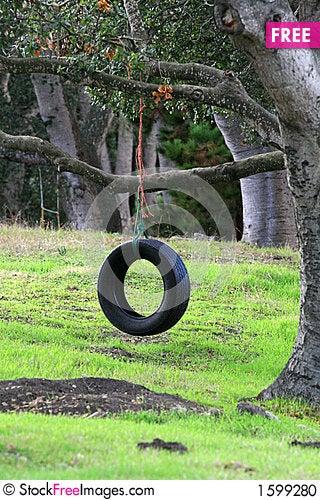 Free Tire Swing Stock Photo - 1599280