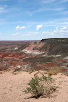 Free Painted Desert Royalty Free Stock Photography - 1590437