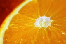 Free Orange Stock Photo - 1591380