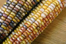 Free Indian Corn Stock Image - 1591941