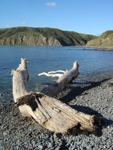 Free Makara Beach Stock Photos - 1596323
