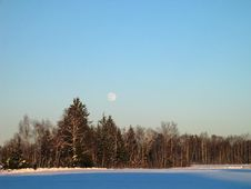 Free Winter-Forest In Snowed-In Meadow - And The Moon Royalty Free Stock Image - 1596746