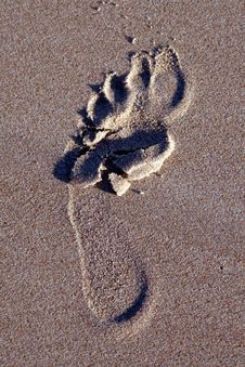 Free Footprint Royalty Free Stock Photo - 1598795