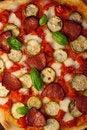Free Salami Pizza Stock Photos - 15902163