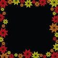 Free Flower Burst On Black Background Royalty Free Stock Photo - 15909125