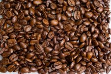 Free Backround Of Coffee Grains Royalty Free Stock Photography - 15902897