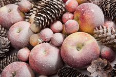 Free Apples, Bumps & Balls With The Snow Royalty Free Stock Image - 15904296