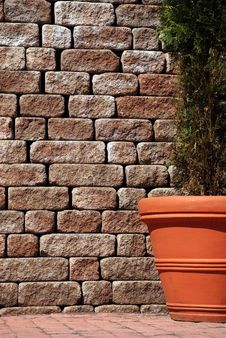 Tree In A Flowerpot On Brick Wall Background Stock Photos