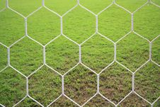 Behind A Goal Royalty Free Stock Photo