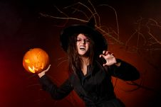 Free A Beautiful Woman In Witch Suite Stock Photos - 15905863