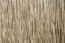Bamboo Pattern Stock Photos