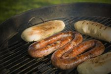 Free BBQ Stock Photos - 15906863
