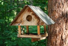 Free Wooden Bird Feeder Stock Photo - 15907210