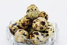 Free Quail Eggs Stock Photos - 15907313