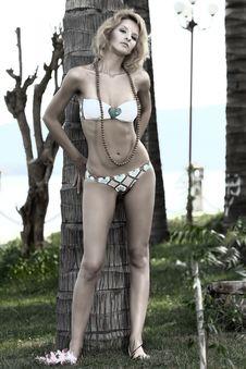Free Woman Near Trunk Of Palmtree Stock Photography - 15907632