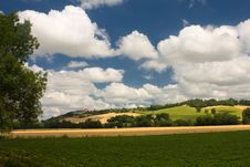 Free Scenic View On Summer Agricultural Landscape Royalty Free Stock Photos - 15909588