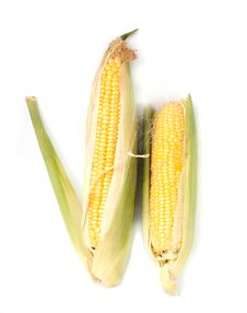 Free Corn Royalty Free Stock Photos - 15909678
