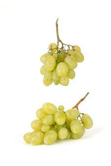 Free Grape Stock Photos - 15909733