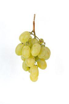 Free Grape Royalty Free Stock Photo - 15909735