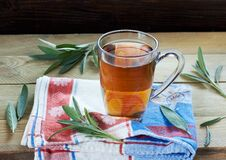 Free Sage Herbal Tea Or Decoction In  Two Glass Cups With Herb Leaves Stock Photography - 159021232