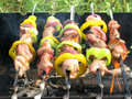 Free Grilled Barbecue Meat With Vegetables Royalty Free Stock Photos - 15912688