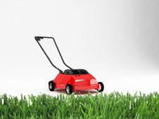 Free Lawn And Grass Stock Photos - 15910063