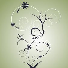 Free Floral Design Royalty Free Stock Photography - 15910197