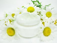 Free Cosmetic Creme For Face Among Daisy Flowers Royalty Free Stock Image - 15913336