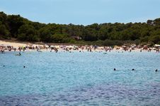 Free Sea Beach With Swimming People Stock Image - 15915811