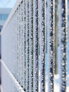 Free Frost On Fence Royalty Free Stock Photography - 15917107