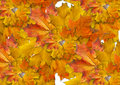 Free Wreath From Maple Slip Stock Image - 15924341