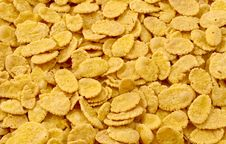 Free Corn Flakes Stock Images - 15922494